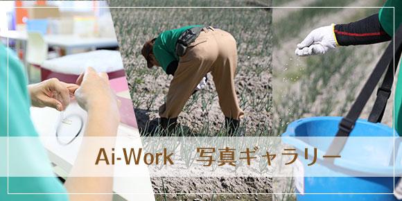 Ai-Work写真ギャラリー
